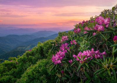Spring in the Roan Highlands